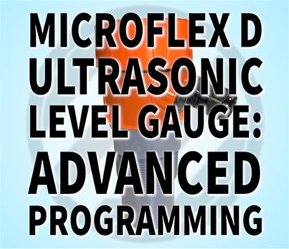 Microflex D: Advanced Programming